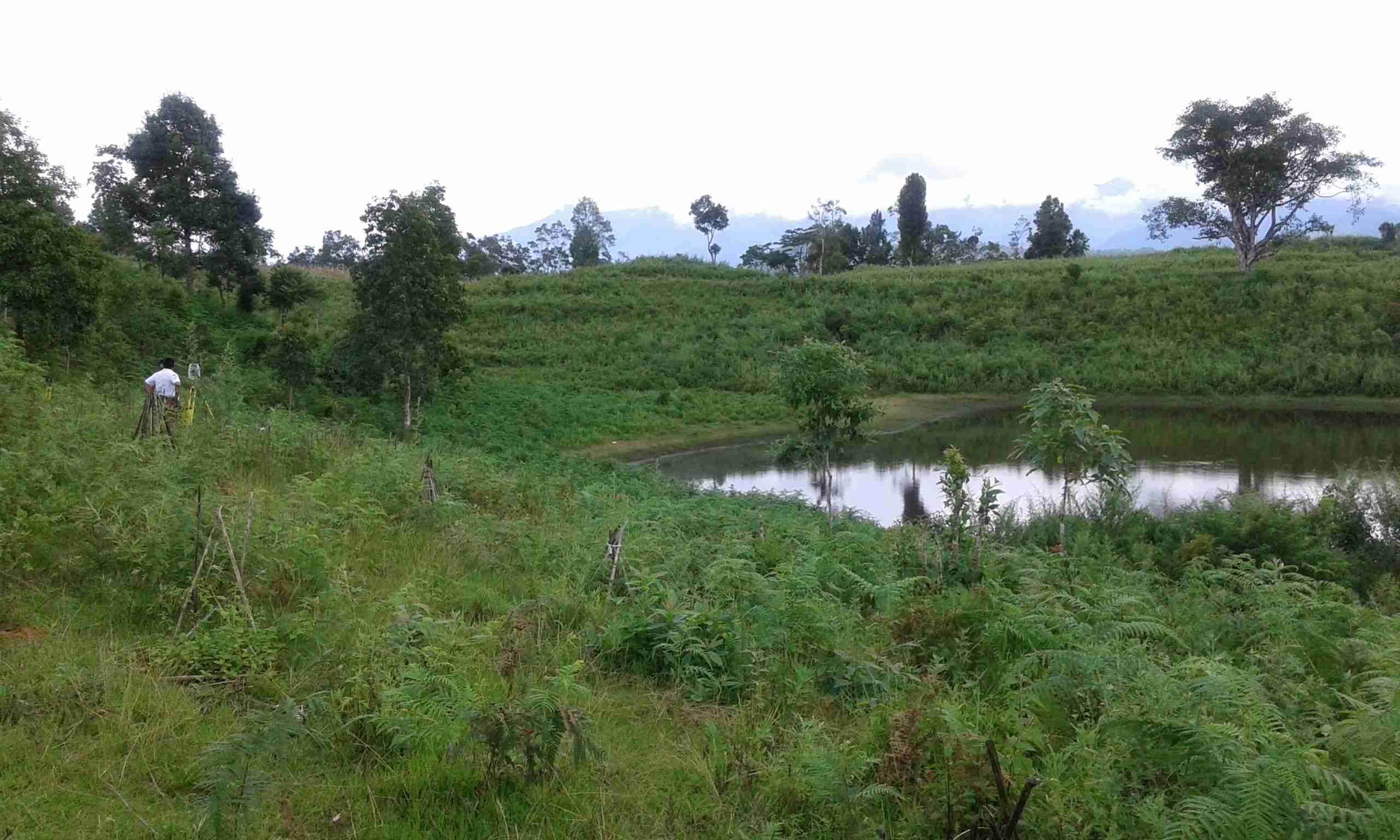 process of acquirng addtional 3 acres of land belonging to MoLHR_